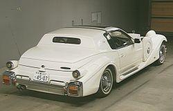 rear of the Mitsuoka le seyde